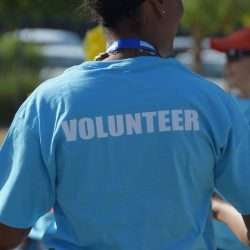 Volunteer Internship Usa